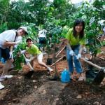 Ascendas Green Campaign 2009 - Planting Event